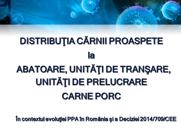 Prezentare PPA (1)