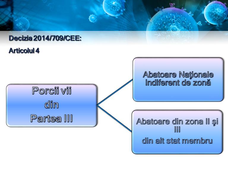 Prezentare PPA (2)